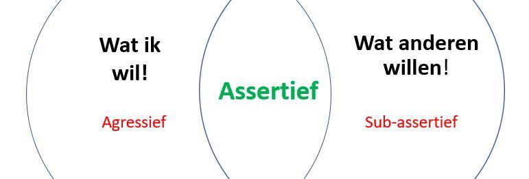 Assertiviteit, assertief, assertiviteitstraining